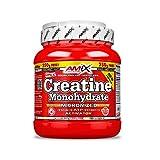 AMIX - Creatina Monohidratada - 500 Gramos + 250 Gramos Gratis - Complemento Alimenticio - Mejora el Rendimiento Físico - Ideal para Deportistas - 100% Micronizada - Proteína Masa Muscular